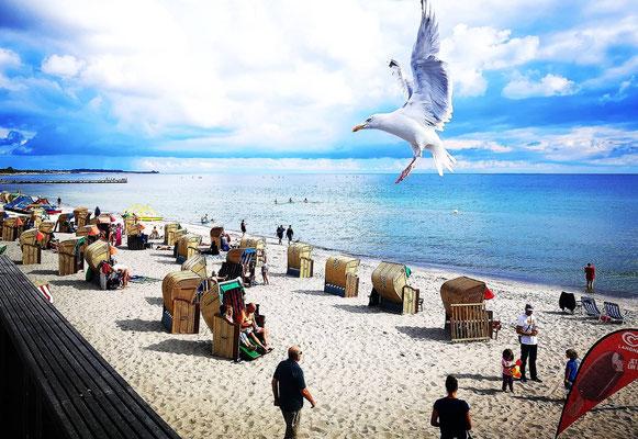 """02.09.""""Fehmarn-Strandpromenade!"""""""