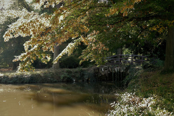 03.10...Schlosspark Bendorf-Sayn