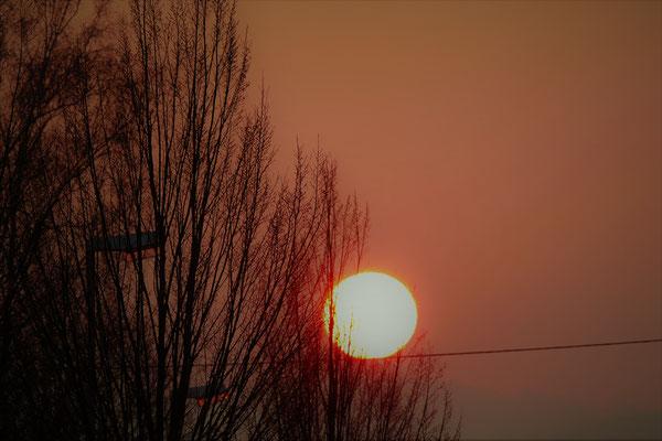08.02...NR-Feldkirchen