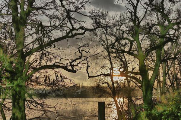04.02...NR..am Rhein