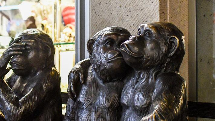 06.01.--Köln..nur die Liebe zählt !