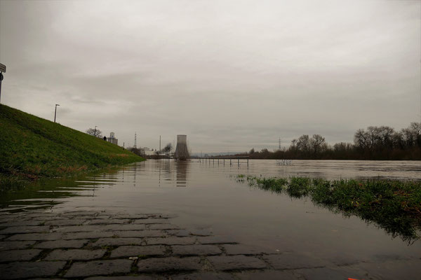 25.01....NR-Deichstadt