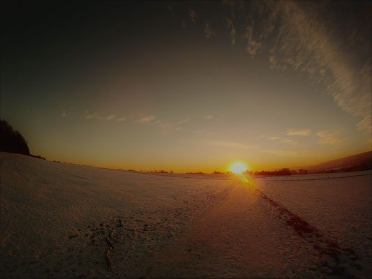 02.03....NR-Tornay