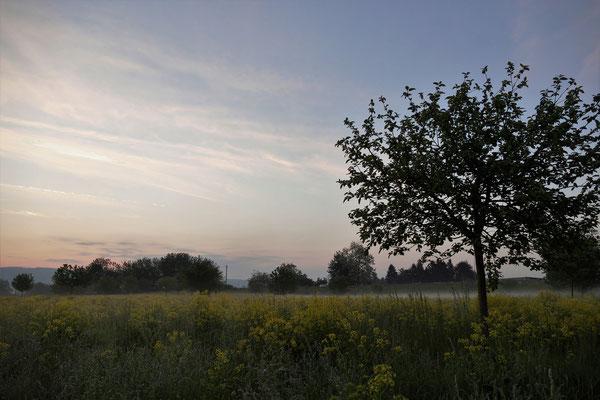 13.05...NR-Gladbacher Feld