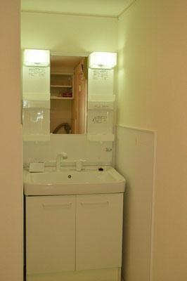 洗面は大型シャンプードレッサータイプ。