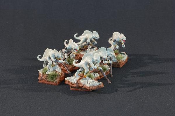 6 Chameleon Skinks Ruins