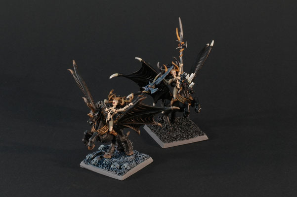 2 Zauberinnen auf schwarzen Pegasi