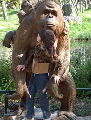 gorilles-zoo de beauval