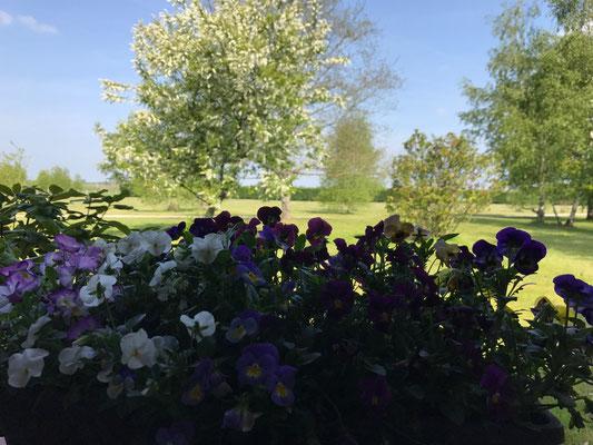 Chambre d'hôtes avec vue sur le jardin