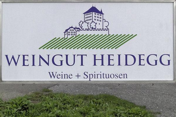 Besuch im Weingut Heidegg