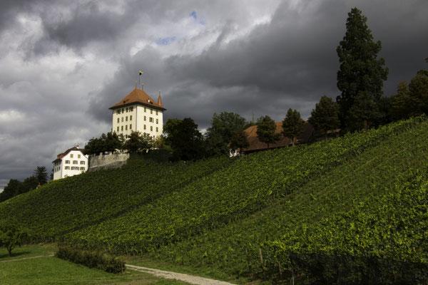 Schloss Heidegg mit Schlossscheune