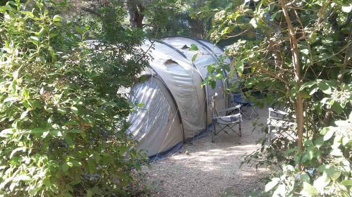 Camping Six Fours : Emplacement Eucalyptus