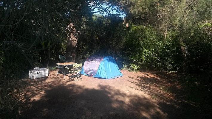 Camping au bord de mer : Emplacement Tamaris