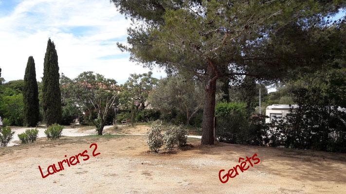 Camping Six Fours : Emplacements Lauriers 2 et Genêts