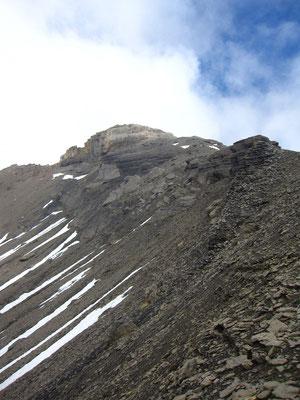 Regard vers le sommet du Sageroux