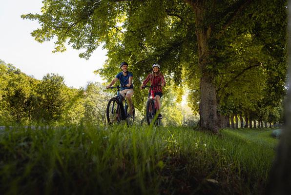 Mit Sternen ausgezeichnete Radtouren führen nach und durch Bad Mergentheim. Foto: Philipp Reinhard