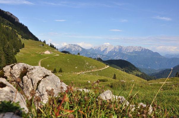 Alpenpanorama bei einer Radtour (c) Tourist Information Oberaudorf, Hubert Wildgruber