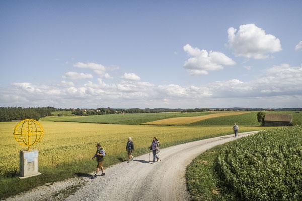 """Auf dem meditativen Wanderweg """"InSichGehen"""" im Dachauer Land  © oberbayern.de/felbert"""