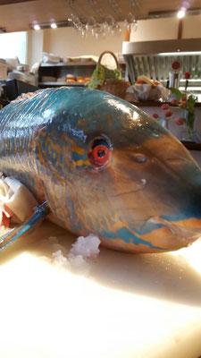 Beim frischen Fisch kommen im Da Capo auch mal nicht alltägliche Sorten auf den Tisch.