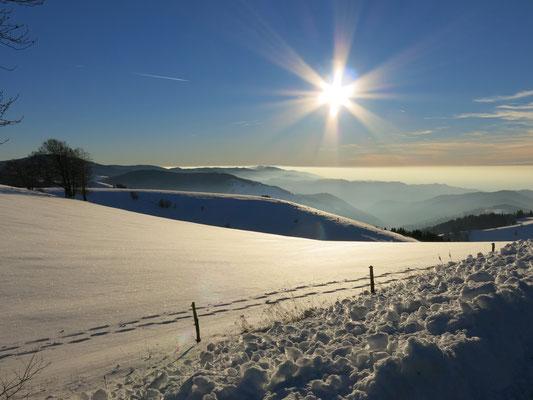 nach einem Kälteeinbruch ist der Winter eingekehrt.