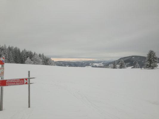 Der Fern Ski Wanderweg Belchen Schonach berührt die Schauinslandspur.