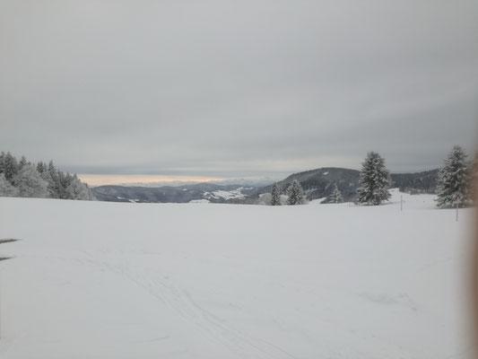 Im Hintergrund sieht nman die Alpen im Sonnenlicht.
