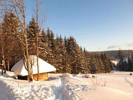 Auch im Südschwarzwald hat es viel geschneit