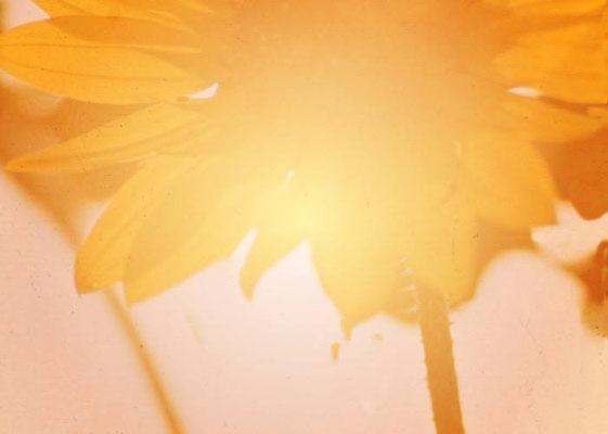 Sylvie Lander_fenêtres sur vue_2015_03_04-peinture digitale