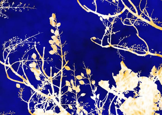 Sylvie Lander_fenêtres sur vue_2015_03_03-peinture digitale