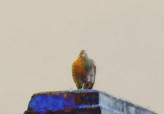 2020-04-04 « Attente », peinture numérique, 30 x 21 cm ©sylvie lander