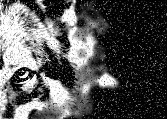Sylvie Lander_fenêtres sur vue_2015_01_12-peinture digitale