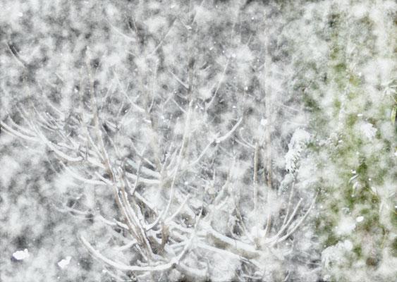 Sylvie Lander_fenêtres sur vue_2015_02_06-peinture digitale