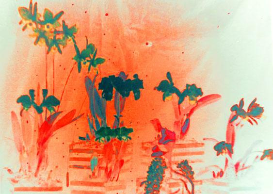 Sylvie Lander_fenêtres sur vue_2015_02_23-peinture digitale