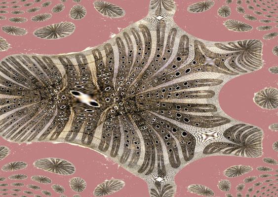 Sylvie Lander_fenêtres sur vue_2015_02_08-peinture digitale