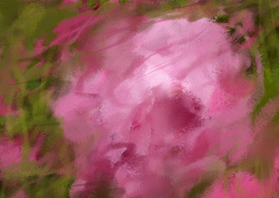 Sylvie Lander_fenêtres sur vue_2015_10_04
