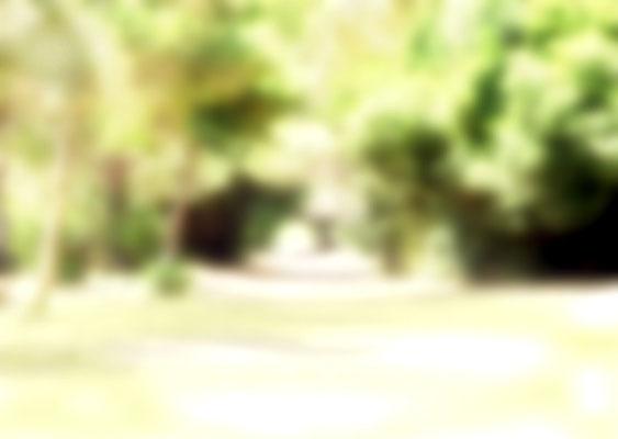 Sylvie Lander_fenêtres sur vue_2015_09_09