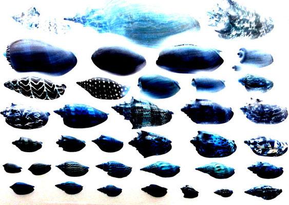 Sylvie Lander_fenêtres sur vue_2015_12_08