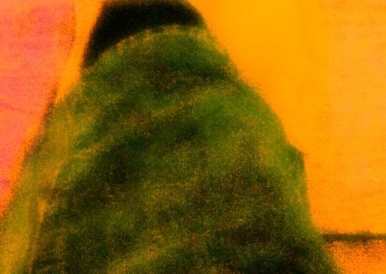 Sylvie Lander_fenêtres sur vue_2015_07_28