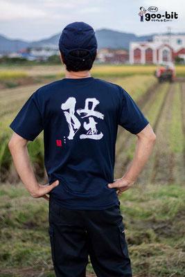 酒米「若水」の収穫を見守る川西屋酒造店の米山工場長。若水愛を感じます!(南足柄市)