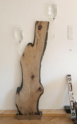 Fragments d'une forêt 2, 2013, tranche d'arbre, matériel de perfusion, sérum physiologique, bac inox, 180x70x20cm.