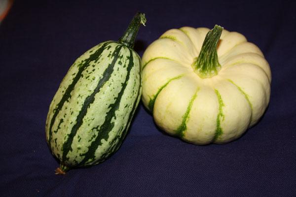 3 Kürbisse/Pumpkins