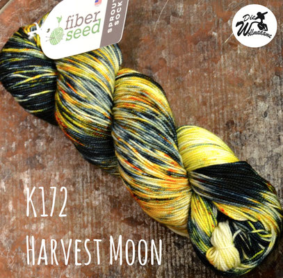 handgefärbte amerikanische Merinowolle the fiber seed sprout sock fingering kaleidoscope