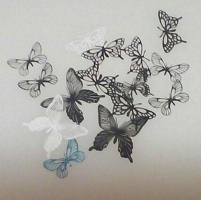一円玉蝶々