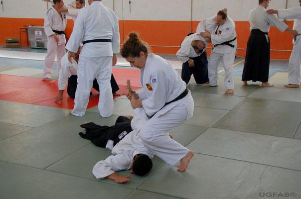 Aplicacion Tecnica de las enseñanzas de Aikido