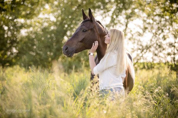 Kuschelfoto mit Pferd und Mensch, Warmblut