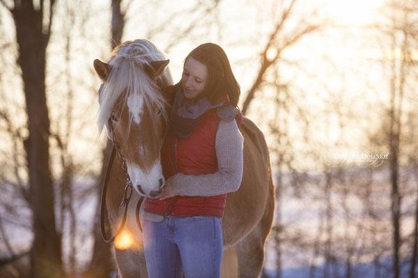 Hafliner, Kuschelfoto Pferd und Mensch