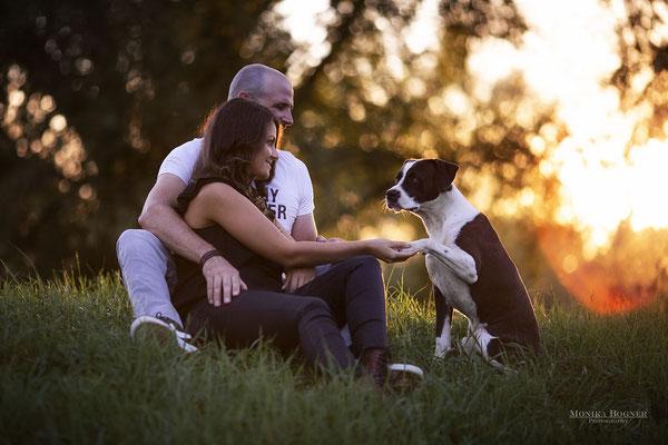 Hund und Mensch Kuschelfoto