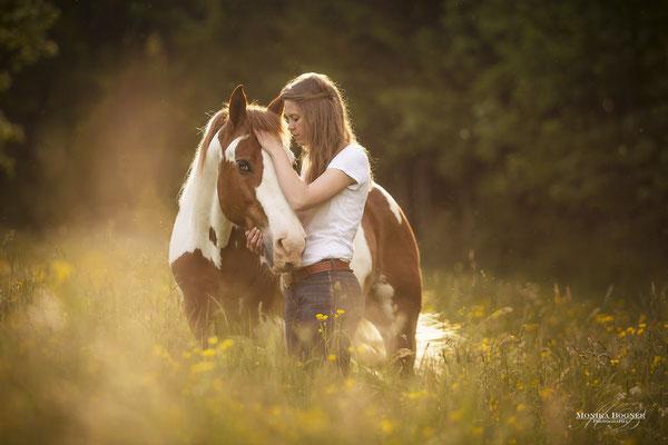 Paint Horse, Kuschelfoto mit Pferd und Mensch