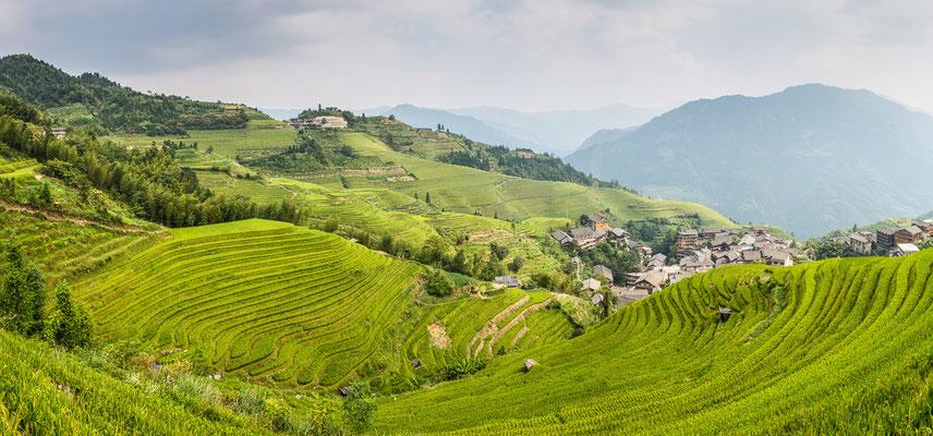 die Reisterrassen von Longsheng