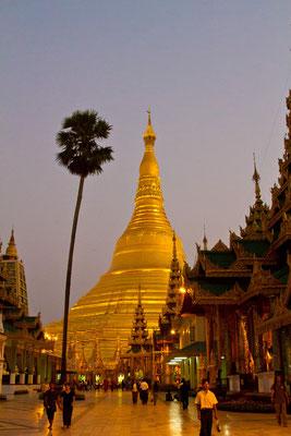 Shwedagon Pagode am Abend